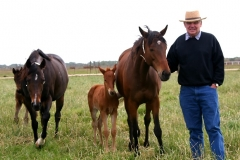 Joe with horses