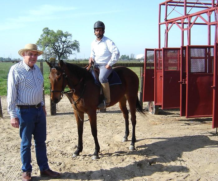 Elk Grove Horse Training